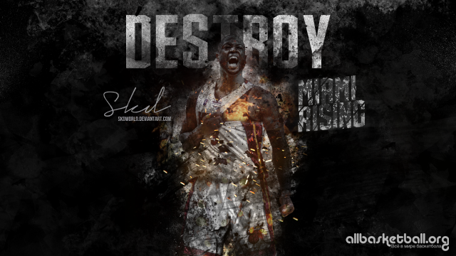 Dwyane Wade Heat Destroy 2015 Wallpaper 2560x1440