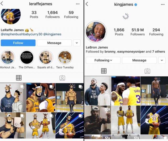 В инстаграме появились аккаунты, которые копируют посты Джеймса с жирафами и Карри – с галаго